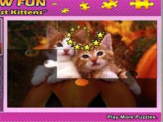 귀여운 아기고양이 퍼즐